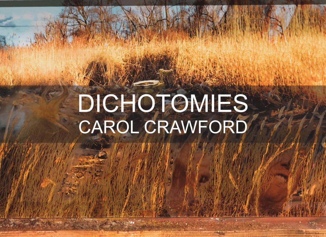 Carol Crawford postcard DICHOTOMIES 2-1