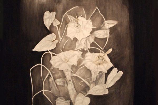 Symbiosis A Story of Relationships - Anastasiya Gutnik Solo